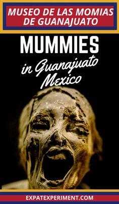 Mummy Museum Guanajuato- Expat Experiment 2 (1) Cabo San Lucas, Mexico Vacation, Mexico Travel, Cozumel, Puerto Vallarta, Travel Guides, Travel Tips, Travel Plan, Travel Stuff