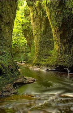 Nature - Finnich Glen near Loch Lomond Scotland. Places To Travel, Places To See, Time Travel, Places Around The World, Around The Worlds, Beautiful World, Beautiful Places, Wonderful Places, Beautiful Pictures