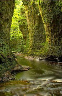 Finnich Glen, Loch Lomond, Schottland. Den richtigen Begleiter für eure Reise findet ihr bei uns: https://www.profibag.de/reisegepaeck/