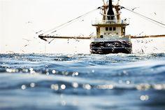 Marking Marine Reserve in the North Sea. A trawler in the North Sea. Photographer: Greenpeace / Cris Toala Olivares
