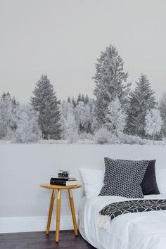 verschneite Nadelbäume als Fototapete