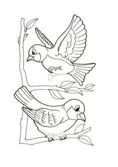 kleurplaten vogels printen