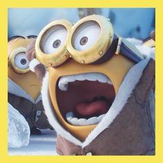 Bob can't contain his. Minions Cartoon, Minion Movie, Minion Party, Minions Quotes, Minions Minions, Minion Humor, Minion Rock, Classroom Humor, Minion Banana