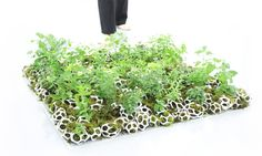 3D Printing Meets Green Living in Landscape Architects' Cella Planters
