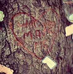 Manzinita, OR (stephen's proposal) will you marry me carved in tree. Aubrey Joy Photography