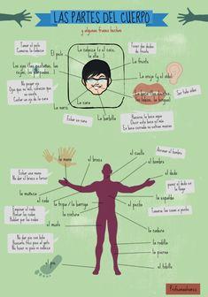 Rápida selección de materiales para aprender a hablar de la salud y de las enfermedades. Vídeo 2. Infografías(ver 3. Ejercicios con autocorrección. 4. Actividades de conversación con tarjetas (pa…