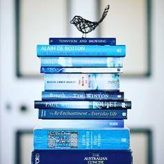 """Gefällt 19 Mal, 1 Kommentare - Aubrey Mroz - Jones (@boundedbybooks1989) auf Instagram: """"Day 18): blue books #bookphotochallenge #bookchallange #marchbookchallenge #bookjunkie #booklover…"""""""