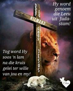 Blessed Assurance, Afrikaans Quotes, Life Rules, Gods Grace, Lily Of The Valley, Bible Quotes, Words, Easter, Faith