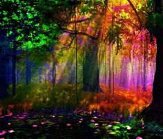 Colorful Rays