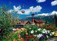 Mountain Lodge at Telluride #travel