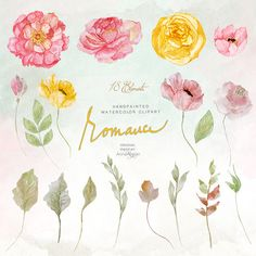 Romance WATERCOLOR Clipart Shabby Flowers by graphicsAtelier