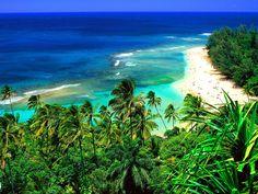 Kaui Beach  Google Image Result for http://www.myhungergames.com/wp-content/uploads/2012/06/Kee-Beach-Kauai-Hawaii.jpg