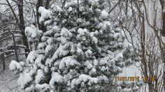 img_2992 Bucharest, Romania, Snow, Travel, Outdoor, Outdoors, Viajes, Destinations, Traveling