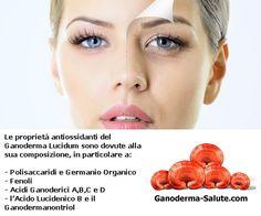 Scopri le #proprietà #antiossidanti del #ganodermalucidum nel nostro articolo sul blog