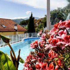 When the spring meets the summer... {Liguria is amazing in May} Quando la primavera incontra l'estate... La Liguria a maggio è splendida. Ti accoglie con una luce particolare è un tepore estivo entusiasmante da assaporare lentamente senza il caos dell'alta stagione. E poi... perché non approfittare della piscina riscaldata del nostro hotel?  #liguria #igersimperia #flowers #violet #springtime #ad #resort #swimmingpool #igersliguria #relax #travelphotography #trip #hotel #wonderlust…