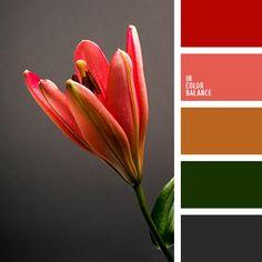 """""""пыльный"""" оранжевый, алый, грязный оранжевый, зеленый, насыщенный красный, осенние оттенки, подбор цвета в интерьере, рыже-коричневый, светло-бордовый, темно серый, цвет асфальта, цвет зелени, цвета осени, цветовое решение для декора, яркий"""