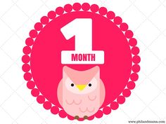 We have three beautiful sets of Baby Monthly Milestone Signs for you, Months 1 to 12, to print and use in photos with your precious baby. We hope you like them!