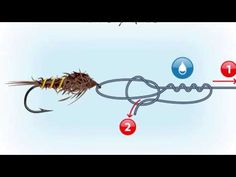 Which Fly Fishing Knots to Use