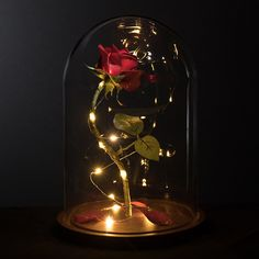 "Life-Sized 13"" Enchanted Rose that Lasts Forever in Glass Dome Inspired By Disney Beauty and the Beast Belle by MagicPrincessWhitney Magic Princess Whitney"