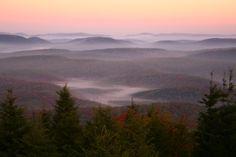 Google Image Result for http://images.forestfoliage.com/wp-content/original/2010_08/Spruce-knob-morning-wv-autumn-forest.jpg