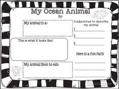 Ocean Animal Report-TWO! Differentiated