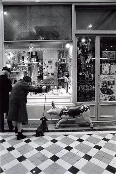 Robert Doisneau - Paris - Passages et galeries Robert Doisneau, Old Paris, Vintage Paris, Vintage Photographs, Vintage Photos, Photo Portrait, Famous Photographers, Magnum Photos, Black And White Pictures