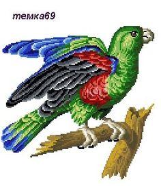 Gallery.ru / Фото #21 - работы с пм3 - temka69 Cute Cross Stitch, Cross Stitch Patterns, Needlepoint, Parrot, Needlework, Victorian, Birds, Embroidery, Crochet
