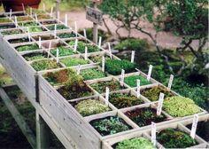 zelf plantenbak maken van steigerhout