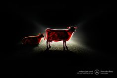 mercedes-benz-intelligent-light-system-more-visibility-cow