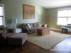 green living room, brown or charcoal couches. Love the old trunk coffee table!!!!