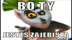 Madagascar, Haha, Marvel, Funny, Quotes, Pictures, Animals, Funny Humour, Quotations