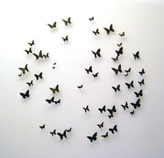 """a-girl-named-alice:  Paul Villinski - Birds and Butterflies   """