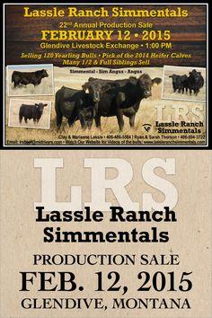 Lassle Ranch Simmentals - 22nd Annual Production Sale - Feb. 12, 2015