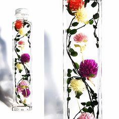ワイヤープランツ×千日紅プリザーブドフラワーとドライフラワーを透明度の高いミネラルオイルの中に閉じ込めました。変色が少なく長く楽しんでいただけますが時間の経過とともに徐々に色あせなどもでてきます。それもハーバリウムの魅力の1つです。植物なので衝撃などで花や実が取れてしまうこともあります。予めご了承下さいミネラルオイルは無臭無害なので肌などに觸れても問題はありませんが、取り扱いにはご注意ください。また破損などにより中のオイルを処分される際は紙などに吸わせ燃えるゴミとしてあつかってください。引火点の高いオイルを使用しておりますが火気の近くなどに飾るのは控えてください。サイズ 高さ214㎜×幅40㎜