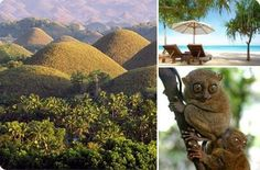 Bohol, Philippines. Chocolate hills to the left, lovely beach up top, and our lil friend the Tarsier.