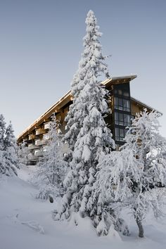 Image courtesy Copperhill Mountain Lodge