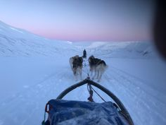 Svalbard februar 2018