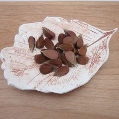 Small Terra Leaf Bowl by TerracottaToys on Etsy