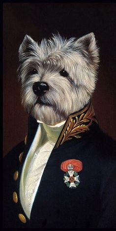 Portrait of dog wearing uniform