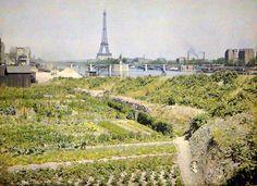 Paris, XVI Arr. - Jardins potagers, quai d'Auteuil (actuel quai Louis Blériot), avec en face le pont de Grenelle et la statue de la Liberté - 28 Juin 1918 - Auguste Léon