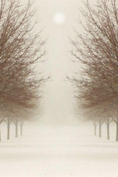 #light #boy #nature #girl #green #brown #tree #photo #picture #grass #morning #night #evening #sunrise #sun #summer #spring #winter #asia #europe #america #australia #beauty #photographer #fun #fog #road #wood #animal #pose #people #thin #fashion #art #gallery #flower #bush