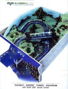 Image result for acrylic tunnel aquarium