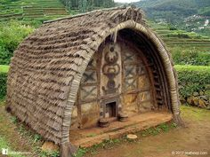 Thatched hut.