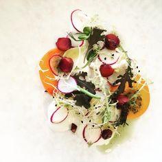 Radijs carpaccio @foodbar63graden Caprese Salad, Panna Cotta, Ethnic Recipes, Food, Salad, Meals, Insalata Caprese