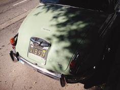 Jaguar / photo by ryenmotzek
