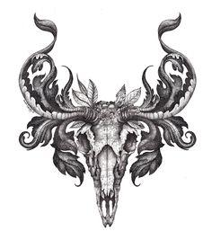 Mister Beaudry's drawings...: Deer Skull illustration