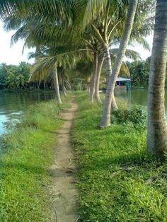 Kerala Travel, India Travel, Beautiful World, Beautiful Places, Bangladesh Travel, Hampton Garden, Incredible India, Garden Landscaping, Countryside