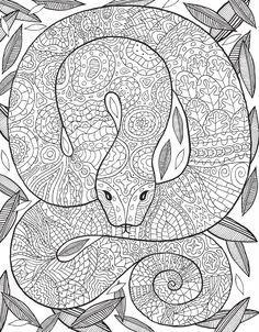 Snake coloring page : El libro de la selva un libro para colorear Make your world more colorful with free printable coloring pages from italks. Our free coloring pages for adults and kids. Snake Coloring Pages, Dragon Coloring Page, Printable Adult Coloring Pages, Mandala Coloring Pages, Coloring Pages To Print, Coloring Book Pages, Coloring Pages For Kids, Printable Worksheets, Free Coloring