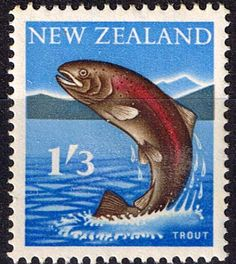 New Zealand 1960 SG 792 Trout Fine Mint SG 792 Scott 344 Condition Fine LMM Only one post charge applied on multipule purchases Details Fish N B With