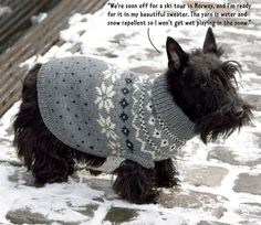 Dress your dog. Knitted with water and snow repellent yarn.